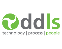 DDLS technology process people